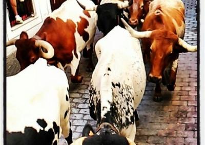 Encierros fiestas populares en Nerpio