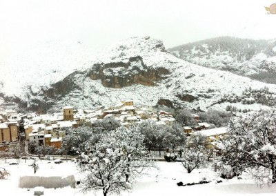 Nerpio nevado